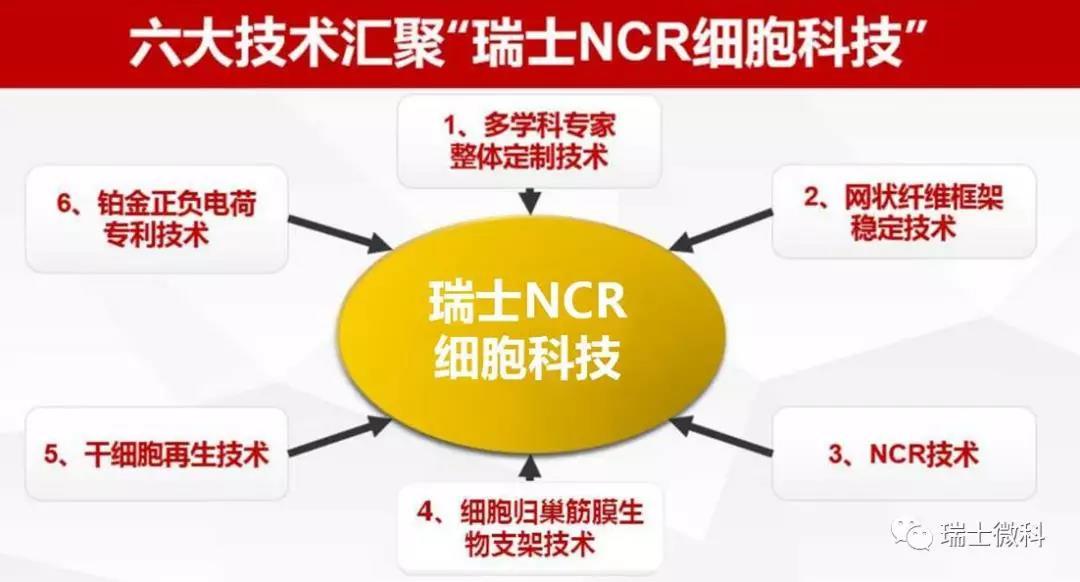 瑞士NCR细胞科技的六项技术