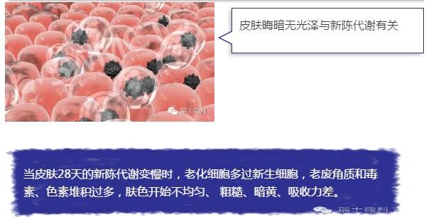 瑞士微科干细胞抗衰老