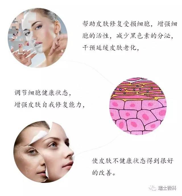 瑞士微科防晒机能修复